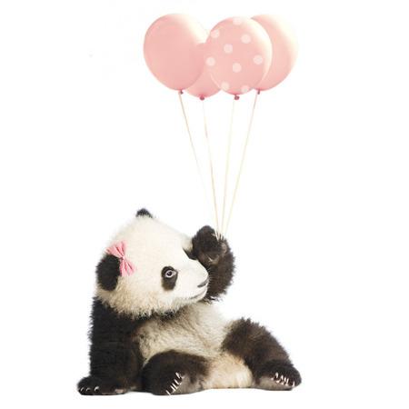 Naklejka Panda Balony Róż M, Dekornik